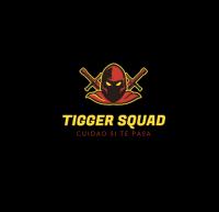 --Tiggers Server--