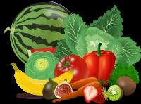 🍓 Sanotes 🏃🏻 - Nutrición, Fitness y Desarrollo Personal