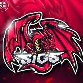 Team SiGS