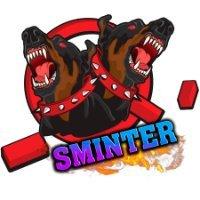 Team Sminter